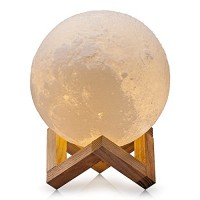 CPLA Lighting Night Light LED 3D Printing Moon Lamp, Warm and Cool White Dimmable Touch Control Brightness 3000K/6000K with USB Charging, Rechargea...