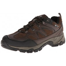 Hi-Tec Men's Altitude Trek Low I Waterproof Hiking Boot,Dark Chocolate,10.5 M US