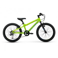 Raleigh Bikes Kids Rowdy 20 Mountain Bike, One Size, Green